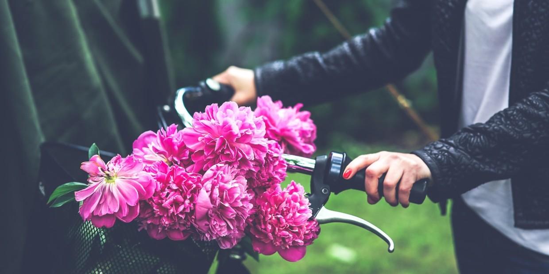 bike-791580_1280