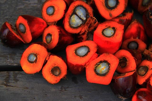 czy olej palmowy jest wegański?
