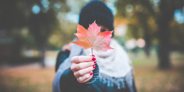 jak przetrwać jesień? co robić jesienią żeby nie zwariować?