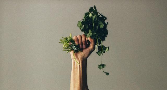 czy dieta wegańska (roślinna|) jest zdrowa?